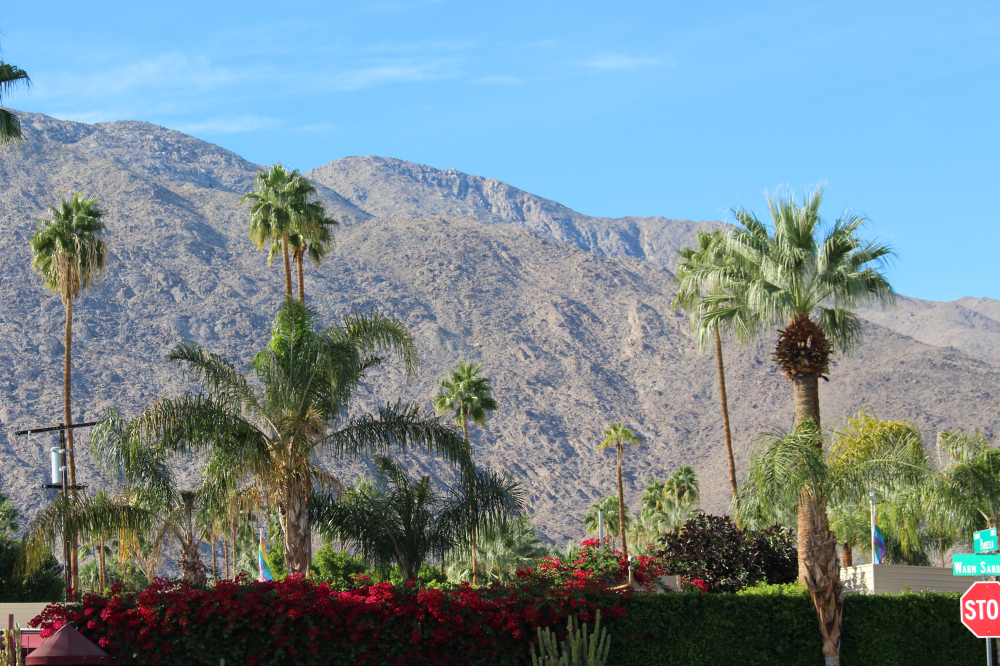 cal33 - A Feasting Week in Palm Springs, California