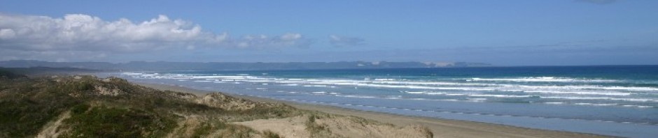 cropped 90 mile beach 1 - The Campervan Chronicles: Driving to South West Rocks