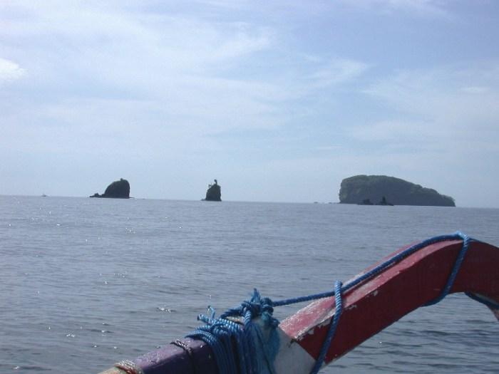 xs1 - Swimming with Sharks in Padang Bai, Bali