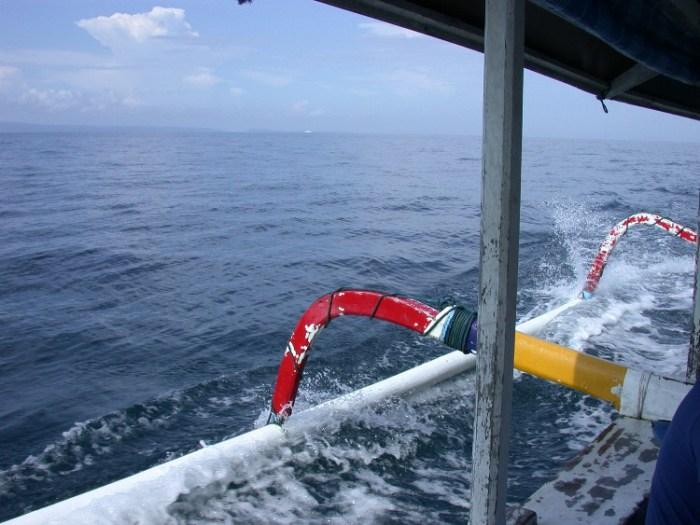 xs3 - Swimming with Sharks in Padang Bai, Bali
