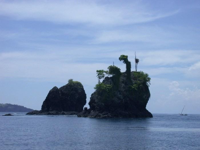 xs4 - Swimming with Sharks in Padang Bai, Bali