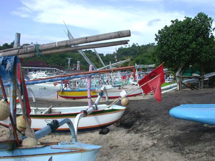 xs7 - Swimming with Sharks in Padang Bai, Bali