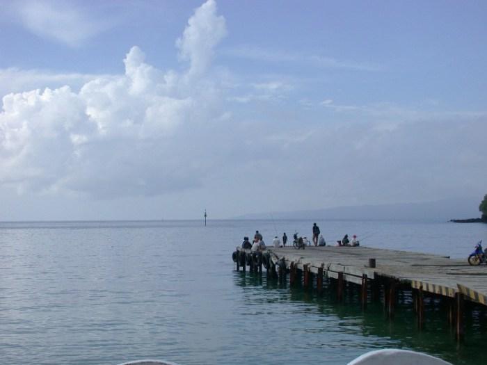 xs8 - Swimming with Sharks in Padang Bai, Bali