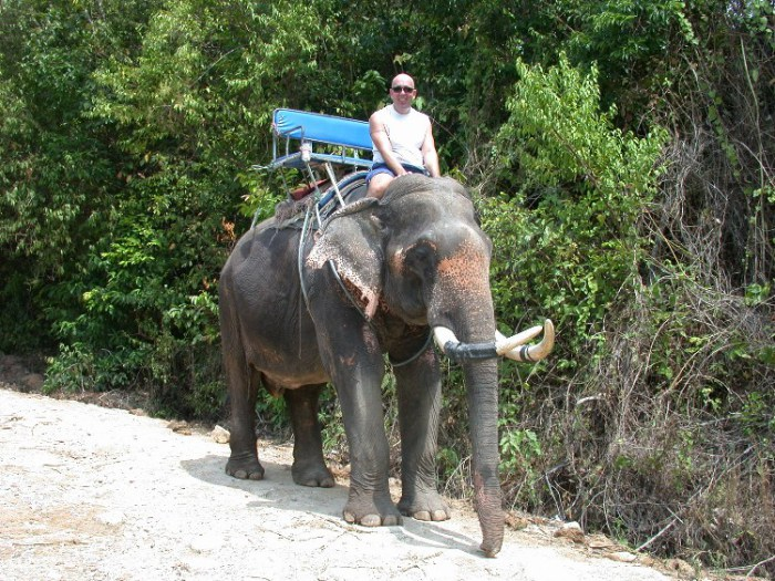 yy1 - I am a Mahout For a Day!