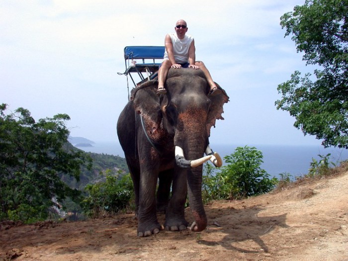 yy2 - I am a Mahout For a Day!