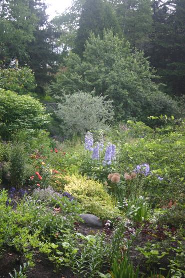 020 - Between a Dandelion and a Daisy: Les Jardins de Métis