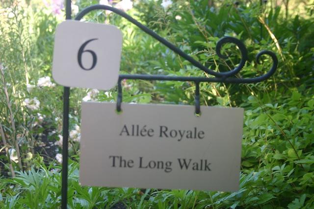 031 - Between a Dandelion and a Daisy: Les Jardins de Métis