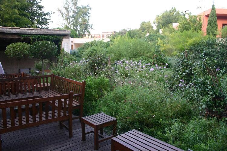 dan7 - Dans Le Jardin des Sens