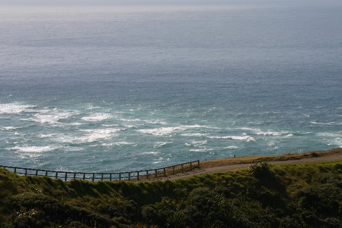 cape10 - Cape Reinga: The Very North of the North Island in New Zealand