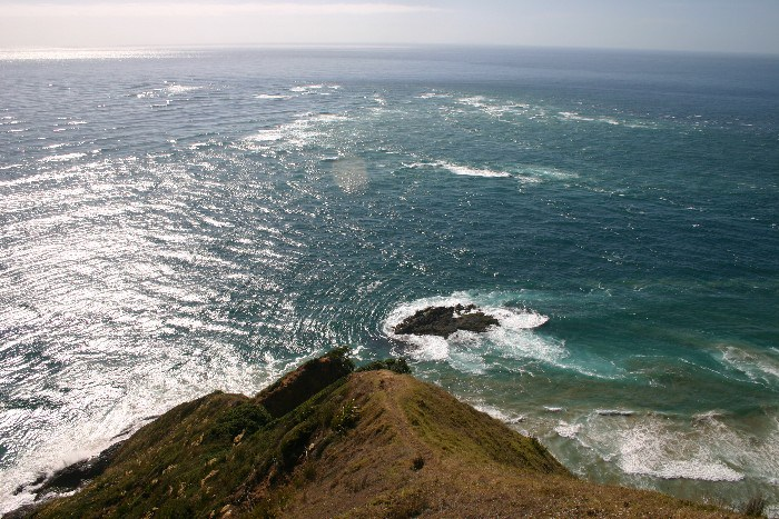 cape11 - Cape Reinga: The Very North of the North Island in New Zealand