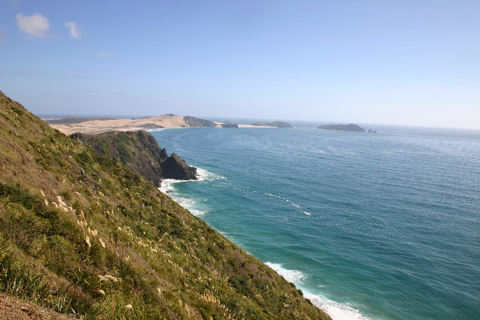 cape14 - Cape Reinga: The Very North of the North Island in New Zealand