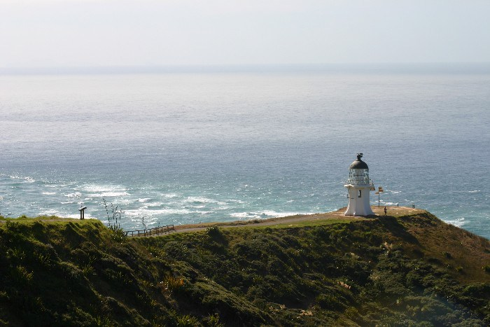 cape15 - Cape Reinga: The Very North of the North Island in New Zealand