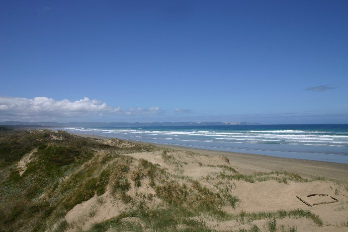 cape16 - Cape Reinga: The Very North of the North Island in New Zealand