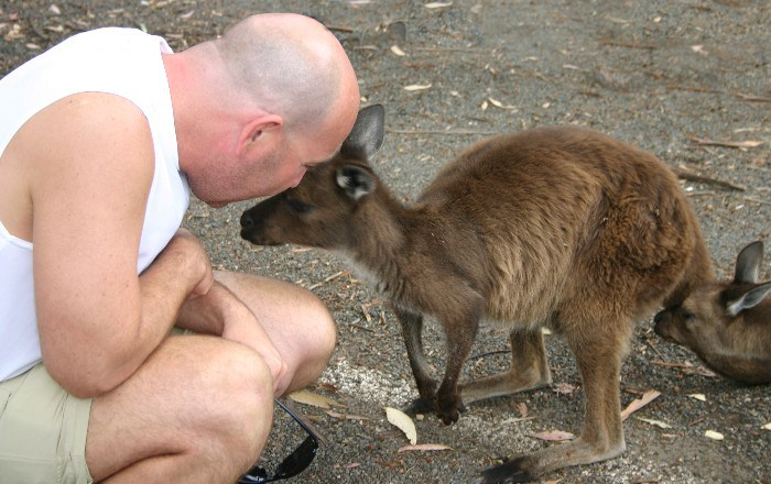 roo16 - Searching for 'Roos on Kangaroo Island, Australia