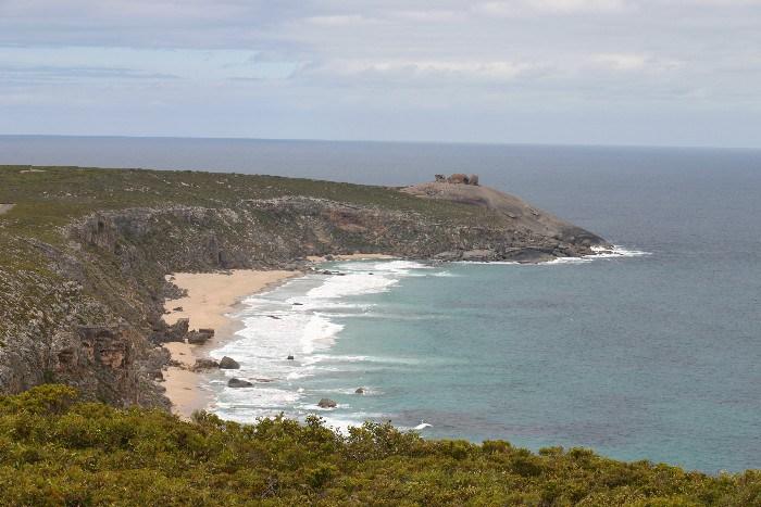 roo4 - Searching for 'Roos on Kangaroo Island, Australia