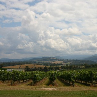 val1 - Tasting the Yarra Valley.