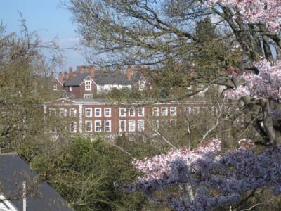 s95 400x300 - England in Photos: An Early Spring
