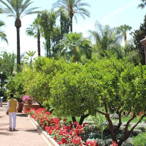 2015 04 27 at 15 33 53 300x300 - La Mamounia:  A Luxurious  Life
