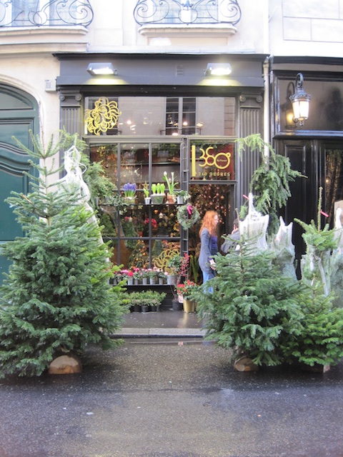 Paris 013 - Christmas in Paris