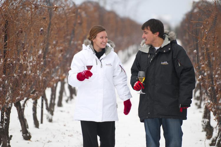 couple in vineyard Ont Winter Expedia - Winter in Ontario: Get Out and Play!