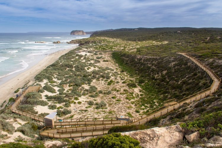 kangaroo island 1402953 1280 750x500 - How to See Australia on a Budget