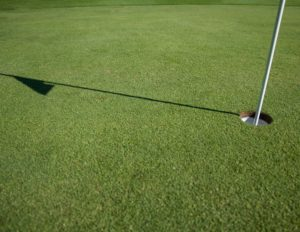 THE BEST Golfing in NSW!