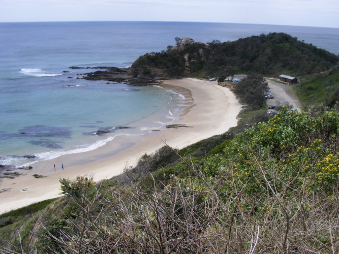 Image 8 Shelly Beach Nambucca 667x500 - Top Australia Beaches You Have to Visit