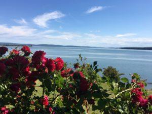 IMG 1674 300x225 - 28 Pictures to Make You Return to Nova Scotia