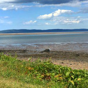 IMG 1684 300x300 - 28 Pictures to Make You Return to Nova Scotia