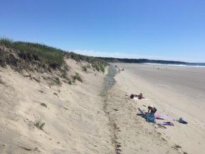 IMG 1892 300x225 - 28 Pictures to Make You Return to Nova Scotia