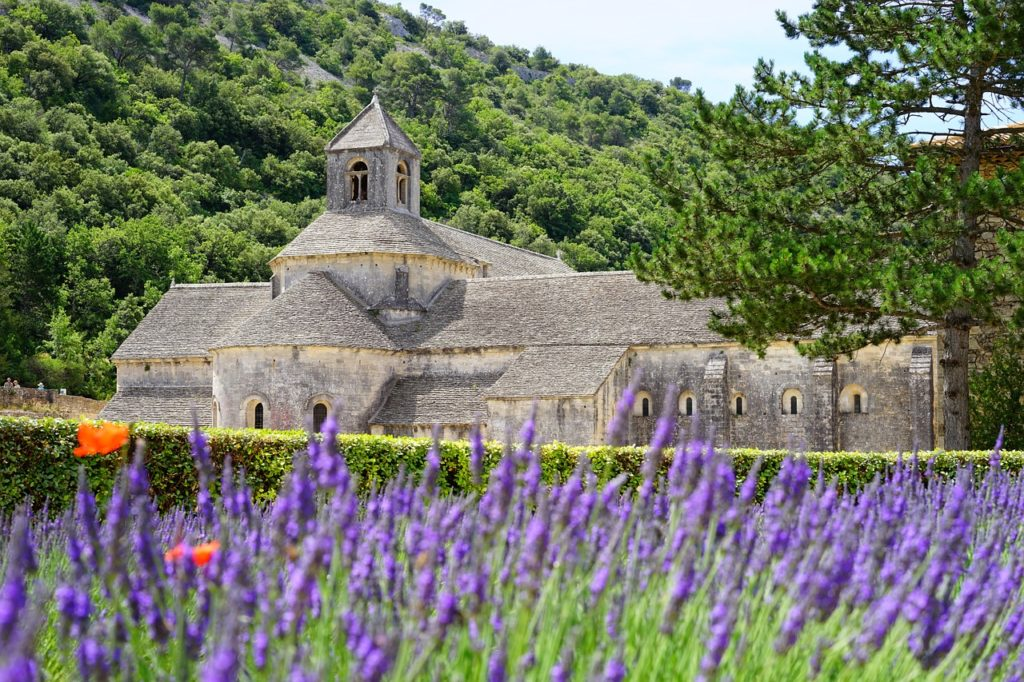 Image 2 Provence France 1024x682 - The 9 Best Travel Experiences Around the World