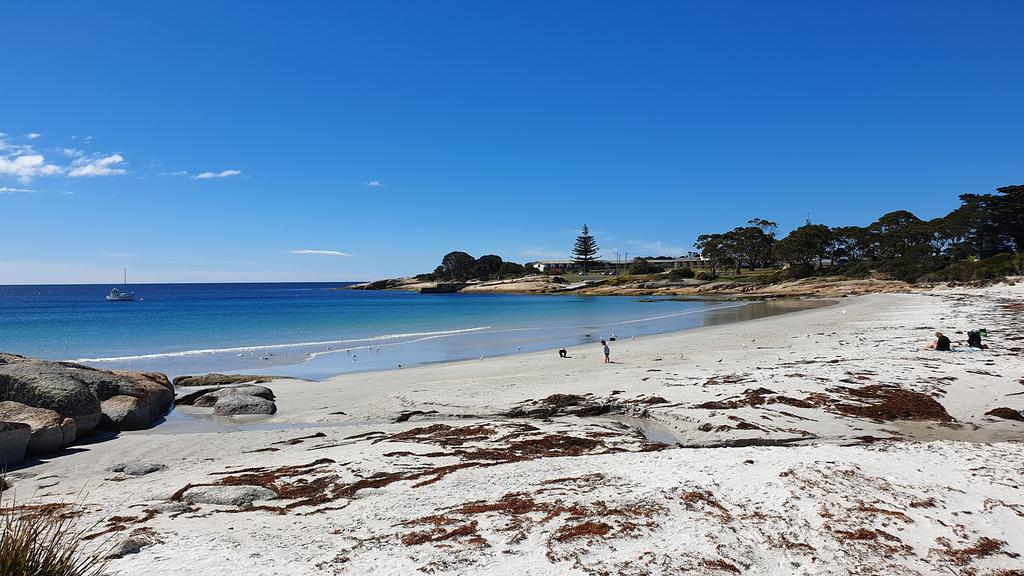 43987883935 d7b27574c3 b - Best Diving Spots in Australia