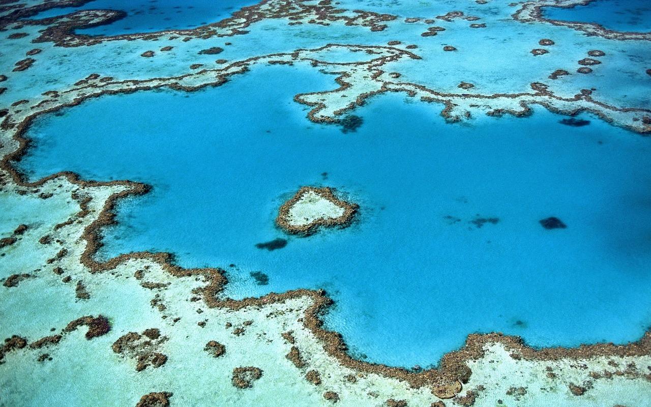 zaragbr - Best Diving Spots in Australia
