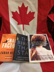 Three books - Chai Factor, The Birds that Stay and the Book Woman of Troublesome Creek, on a chair that looks like the Canadian flag.